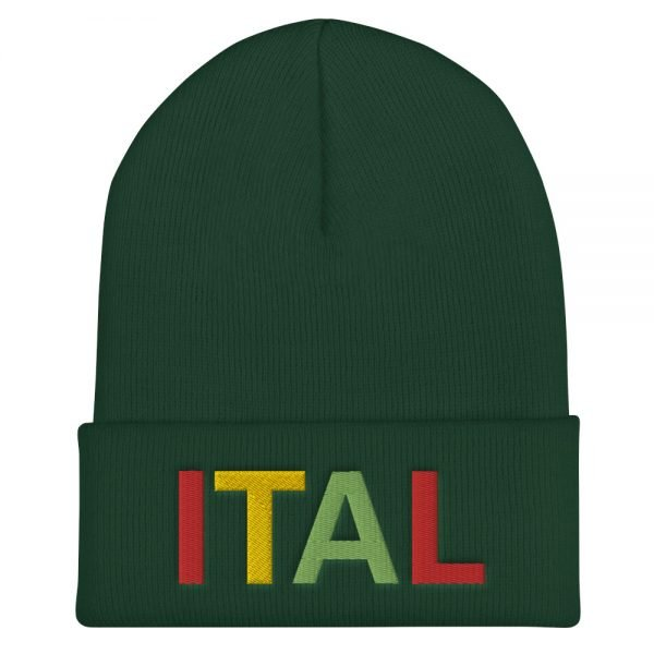 Ital Rasta cuffed beanie in forest green. This reggae beanie. It's not only a great head-warming piece but a staple accessory in anyone's wardrobe.