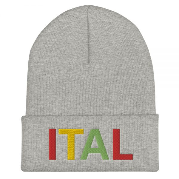 Ital Rasta cuffed beanie in pale grey. This reggae beanie. It's not only a great head-warming piece but a staple accessory in anyone's wardrobe.