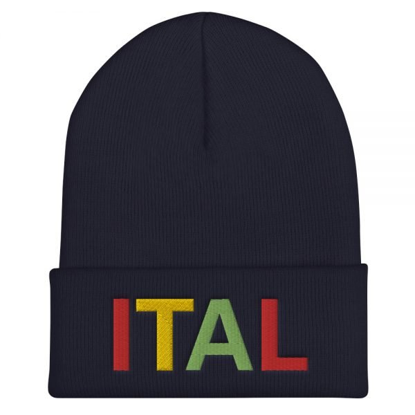 Ital Rasta cuffed beanie in navy blue. This reggae beanie. It's not only a great head-warming piece but a staple accessory in anyone's wardrobe.
